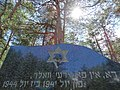 Memorial to Jewish Holocaust - Paneriai - Outside Vilnius - Lithuania - 01 (27228628743).jpg