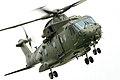 Merlin - RAF Waddington 2005 (2624591448).jpg