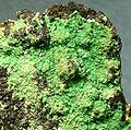 Metatorbernite-178741.jpg