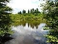 Miallet Puyraud étang amont.JPG