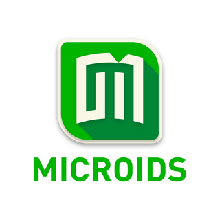 Microids French game company