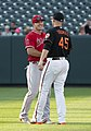 Mike Trout, Mark Trumbo2018.jpg