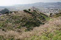 Minabe-Bairin Minabe Wakayama04n3200.jpg