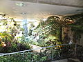 Miracle Planet Museum of Plants in 2013-4-27 No,22.JPG
