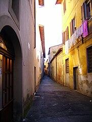 Montevarchi_Montevarchi_Madonna_della_Neve_Site.JPG