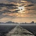 Morning Mist - Near San Damaso (MO) Italy - October 28, 2011 - panoramio.jpg