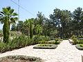 Mount Herzl P1110291 (5897763372).jpg