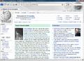 MozillaFirefox3.6.png