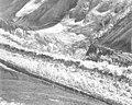 Muldrow Glacier, crevasses in valley glacier, undated (GLACIERS 5168).jpg
