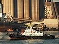 Multratug 5 (tugboat, 2004) IMO 9350161, Calandkanaal pic2.JPG