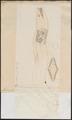 Muraena afra - 1774-1804 - Print - Iconographia Zoologica - Special Collections University of Amsterdam - UBA01 IZ15300137.tif