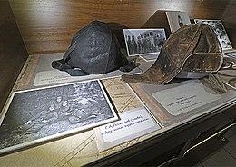 Museum Of Hryhoriy Rechkalova 05.jpg