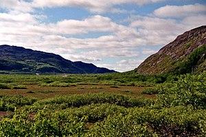 Sør-Varanger - Image: N886 Grense Jakobselv 2012 07 06 12 00 21