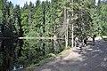 NPR Boubínský prales 20120910 01.jpg