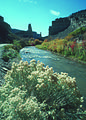 NRCSUT03024 - Utah (6417)(NRCS Photo Gallery).jpg