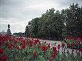 Nagornyy, Kharkov, Kharkovskaya oblast', Ukraine - panoramio (11).jpg