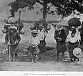 Nahuala1897.jpg