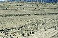Namib-Naukluft National Park - désert 01.jpg