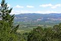 Napa Valley from Oakville Grade 2.jpg