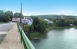 Narrowsburg viewed from the Narrowsburg–Darbytown Bridge.