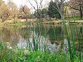 Natural Pond (Wah Mughal Gardens), Wah Cantt.jpg