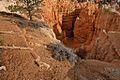 Navajo Loop Trail, Bryce Canyon National Park (3447058080).jpg