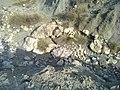 Navidhand new 327 - panoramio.jpg