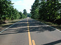 Neshoba County Hwy 21 South (3).JPG