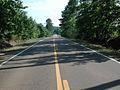 Neshoba County Hwy 21 South (3).JPG