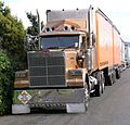 New Zealand Trucks - Flickr - 111 Emergency (174).jpg