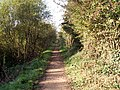 Newcut canal old tow Path - geograph.org.uk - 952959.jpg