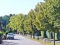 Nieder Neuendorf - Zur Baumschule - geo.hlipp.de - 41636.jpg