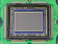 Nikon D90 - DX-sized image sensor-2454.jpg