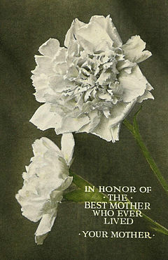 Northern Pacific Railway Mother's Day card 1915.JPG