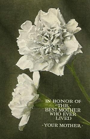 Mother's Day (United States) - Mother's Day 1915 postcard from Northern Pacific Railway