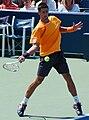 Novak Đoković at the 2009 US Open 04.jpg