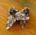 Oak Beauties. Biston Strataria - Flickr - gailhampshire (2).jpg