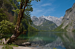 Obersee (Königssee) - Looking towards the Watzmann from the southeastern shore of the Obersee