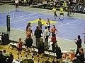 Ohio State vs. Michigan volleyball 2011 14.jpg