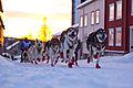 Ola Brennodden Sunde (8436525340).jpg