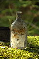 Old medicine bottle 02.jpg