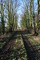 Old railway track, Denton - geograph.org.uk - 1126936.jpg
