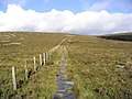 On the Pennine Way in the Cheviot Hills - geograph.org.uk - 265133.jpg