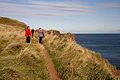 On the path to St Abb's Head - geograph.org.uk - 1523737.jpg