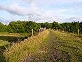 On top of the Waverley Viaduct - geograph.org.uk - 1411823.jpg