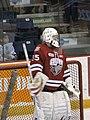 Ontario Hockey League IMG 0851 (4471084954).jpg