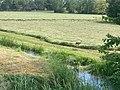 Oostpoler, Onnerpolder, Glimmen, Blankenborch, Noordlaarderbos, Haven Noordlaren 01 12 07 842000.jpeg