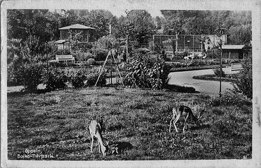 Oppeln Zoo