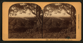 Orange Groves, San Gabriel Valley, Cal, by Bonine, R. (Robert K.).png