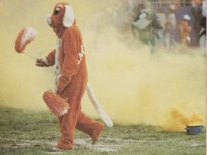 Smokey (mascot) - The original Smokey costume